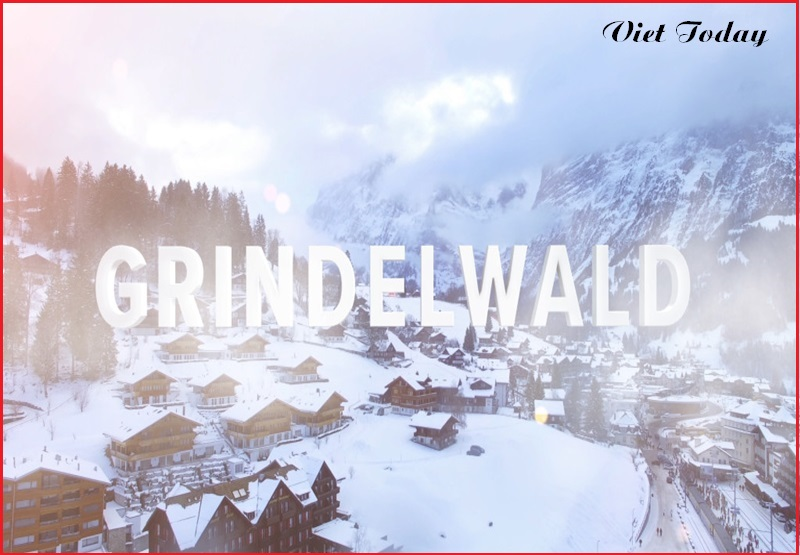 Lễ hội tuyết Grindelwald thuy si